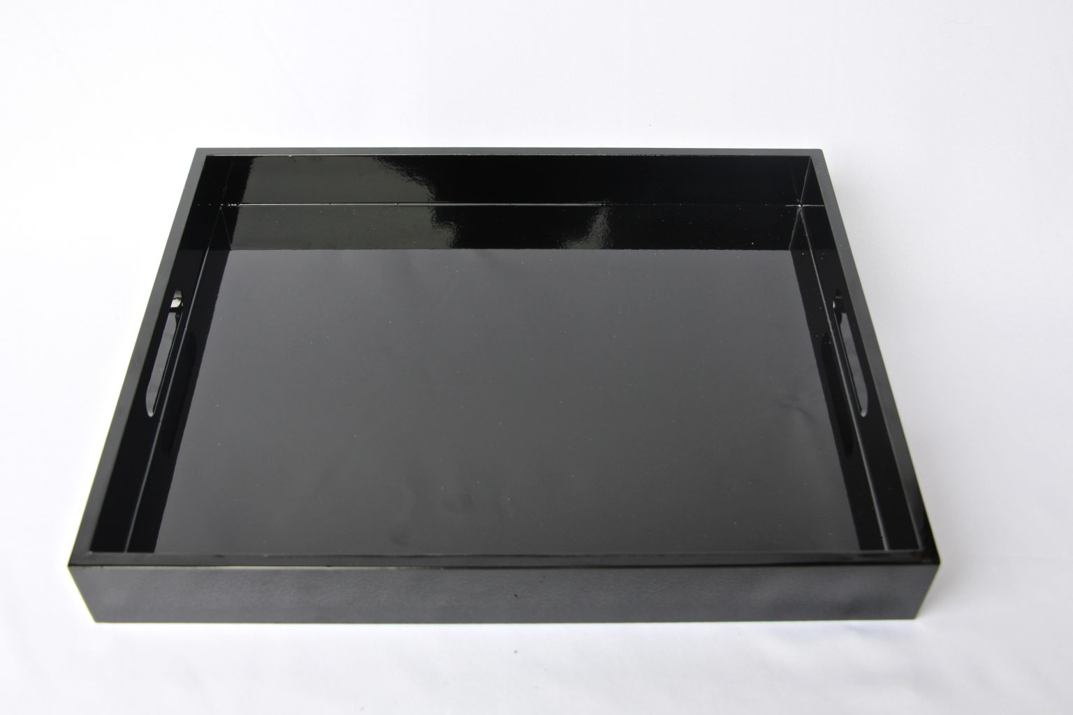 Lucite Tray With Gold Handles